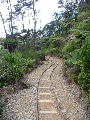 New Zealand transport options | Tourleader New Zealand
